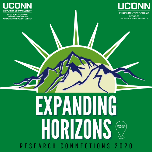 Expanding Horizons: Research Connections 2020